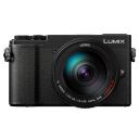 Panasonic Lumix DC-GX9 + Lumix G Vario 14 - 140 mm / F3.5 - 5.6 ASPH.Picture2