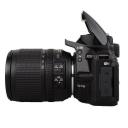 Nikon D5500 + 18-105 mm AF-S DX VR.Picture2
