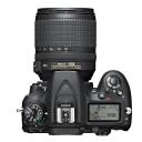 Nikon D7100 + 18-105 mm AF-S DX VR.Picture3
