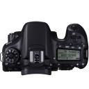Canon EOS 70D.Picture2