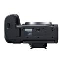 Canon EOS R5.Picture3