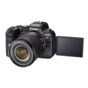 Canon EOS R6 + RF 24-105mm f/4-7.1 IS STM.Picture2